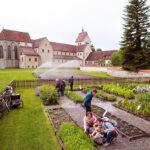 Kräuterwochen am westlichen Bodensee